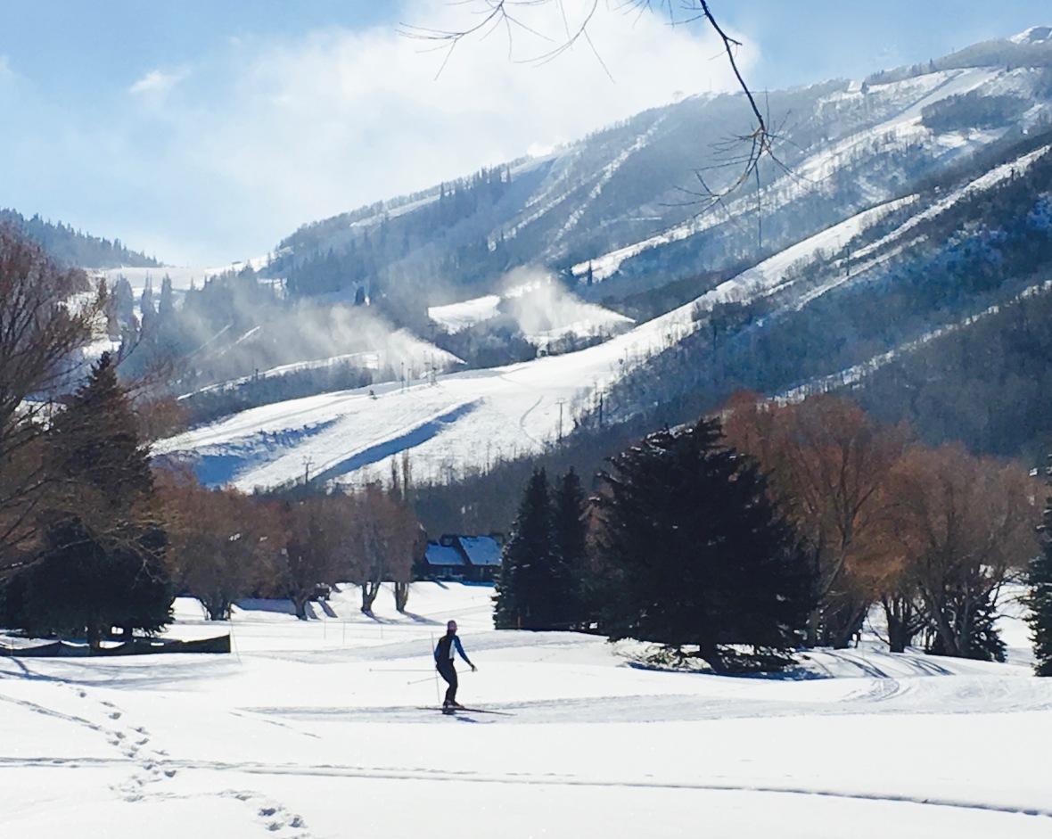 utah skier full .jpg