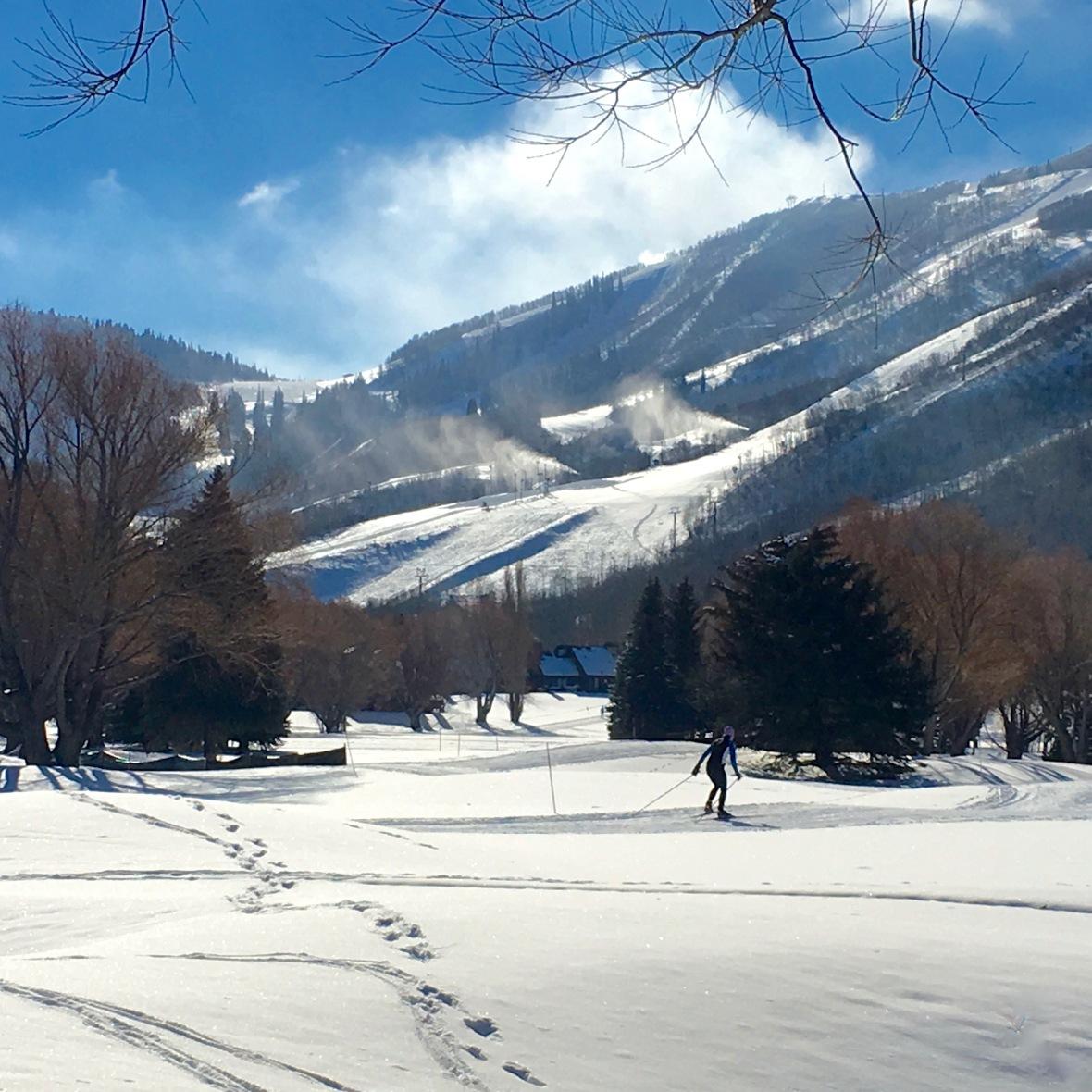 utah-skier
