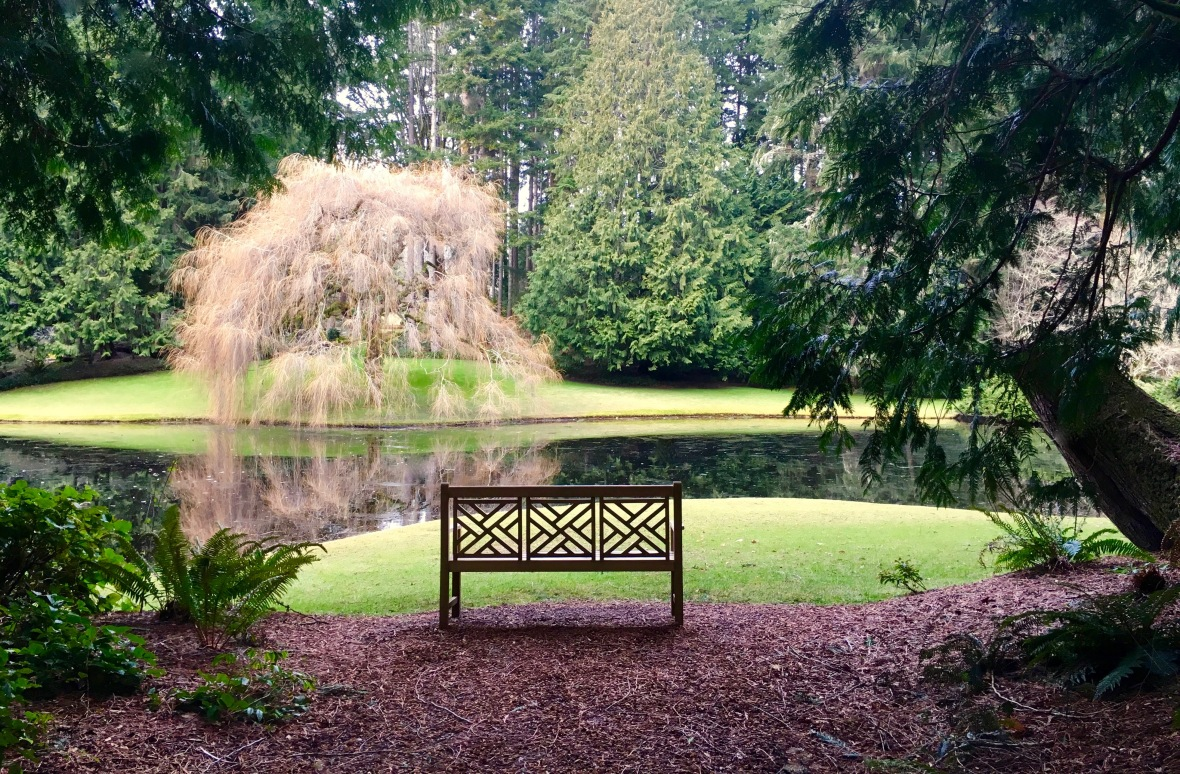 bloedel-bench-big-composition