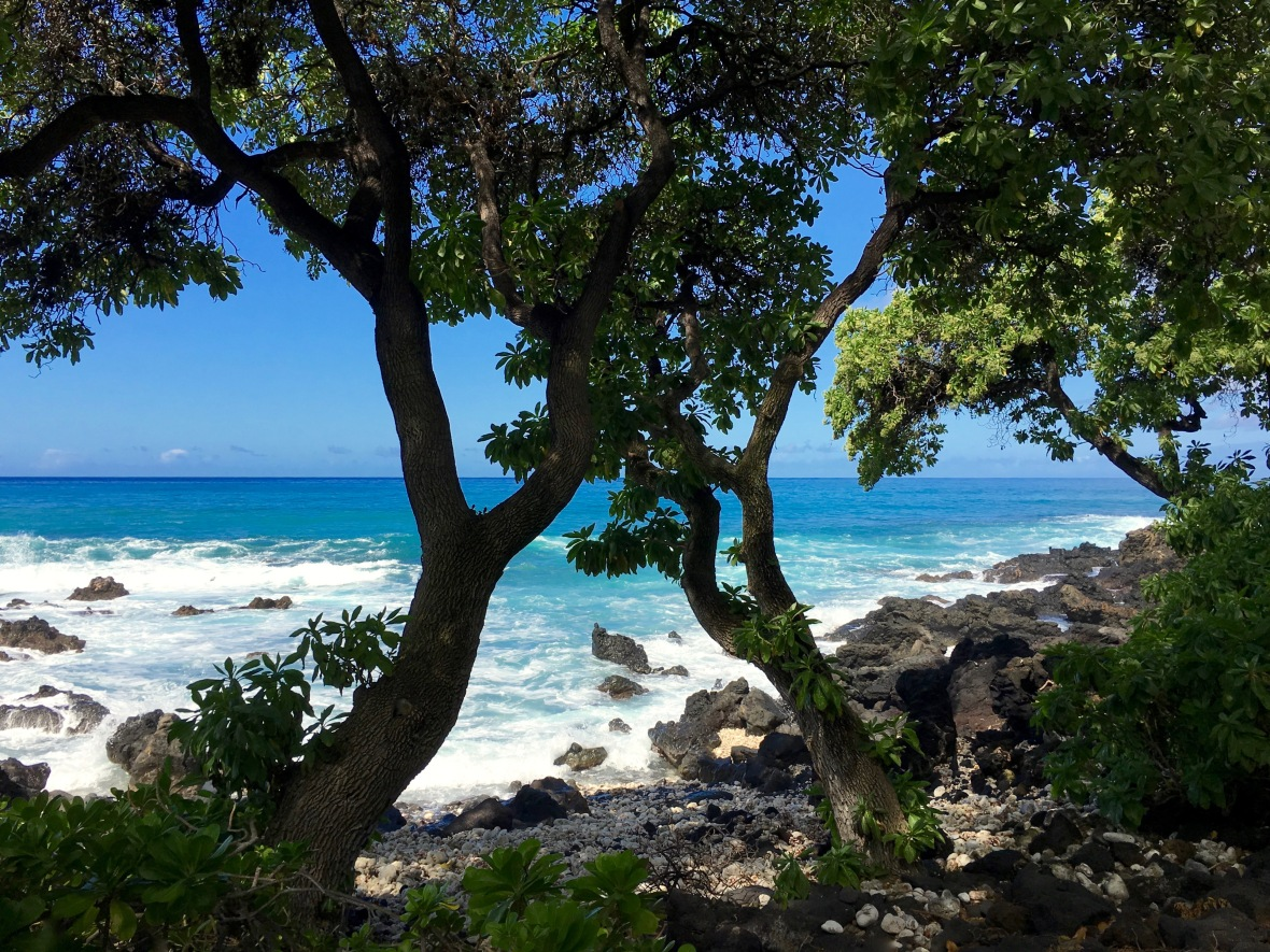 hawaii-around-bend-twin-trees
